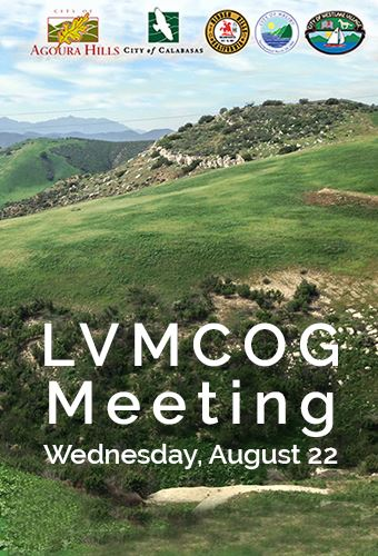 LVCOG Meeting