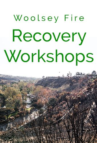 Recovery Workshop