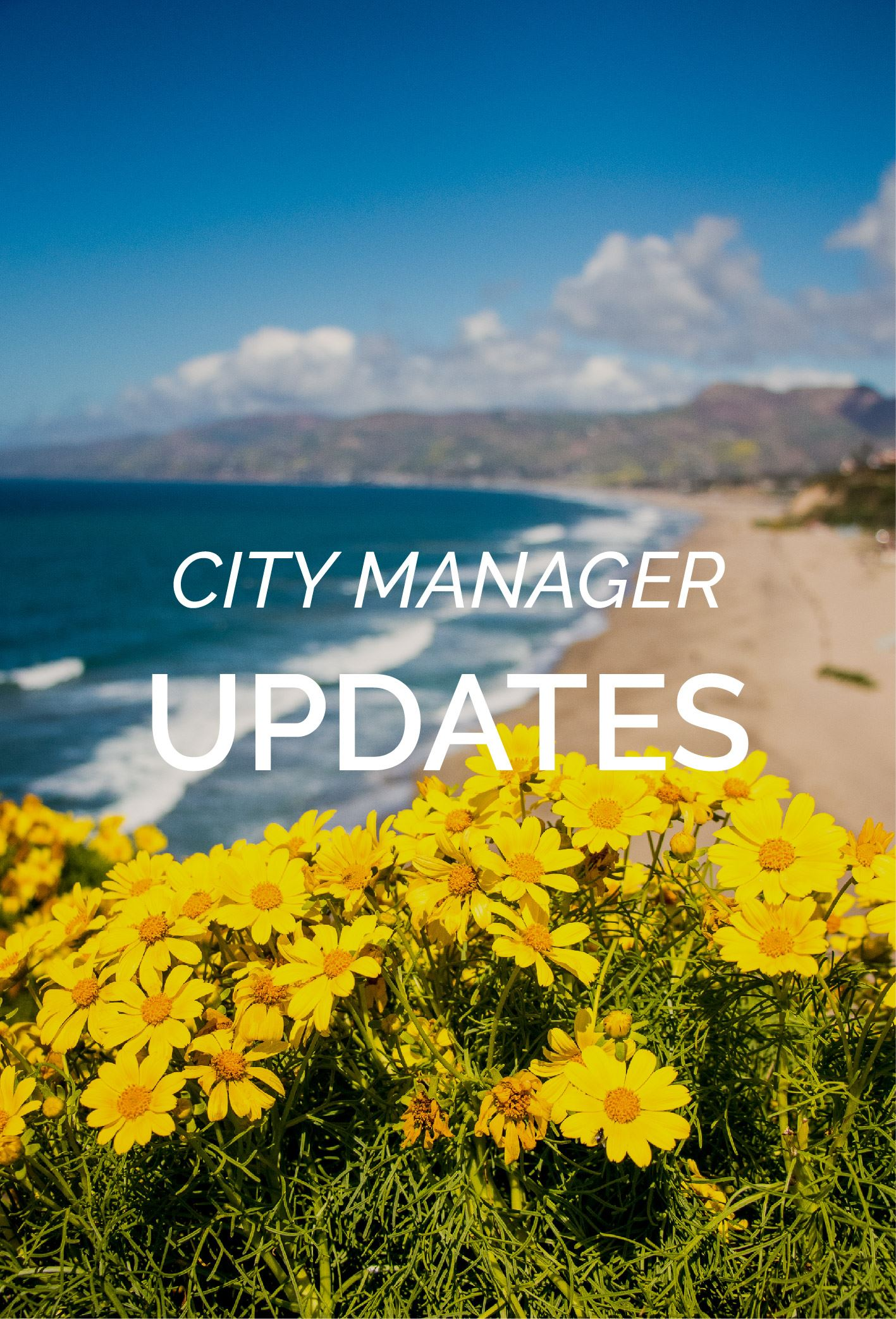 City Manager weekly update 5.17.19