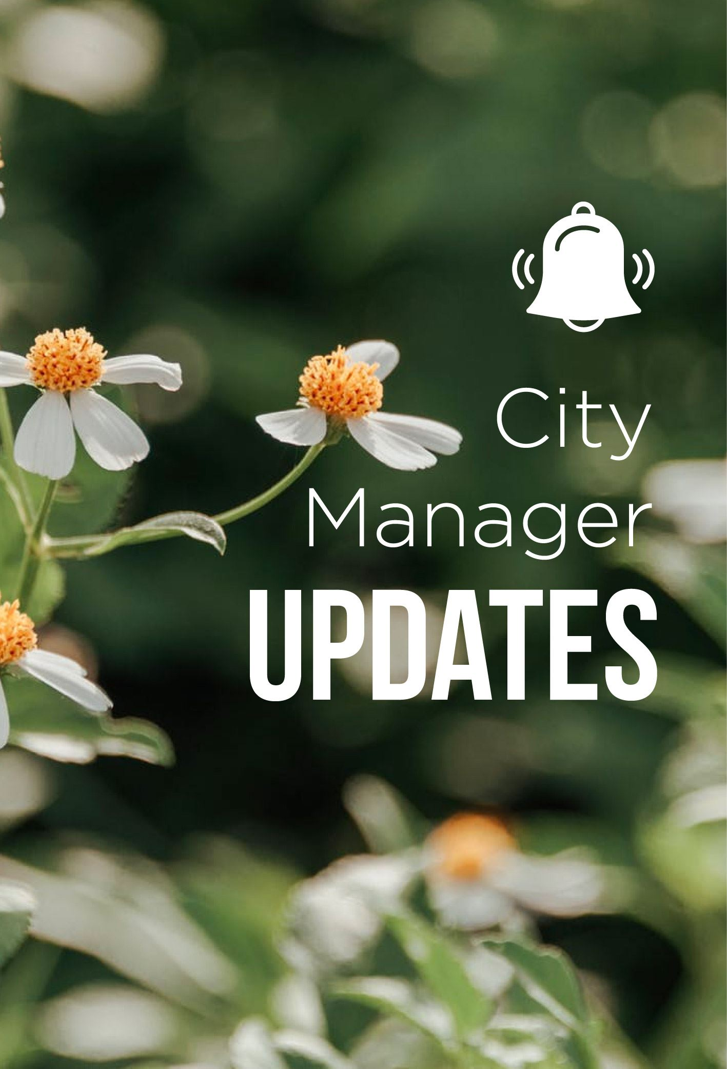2.20 City Manager update-08