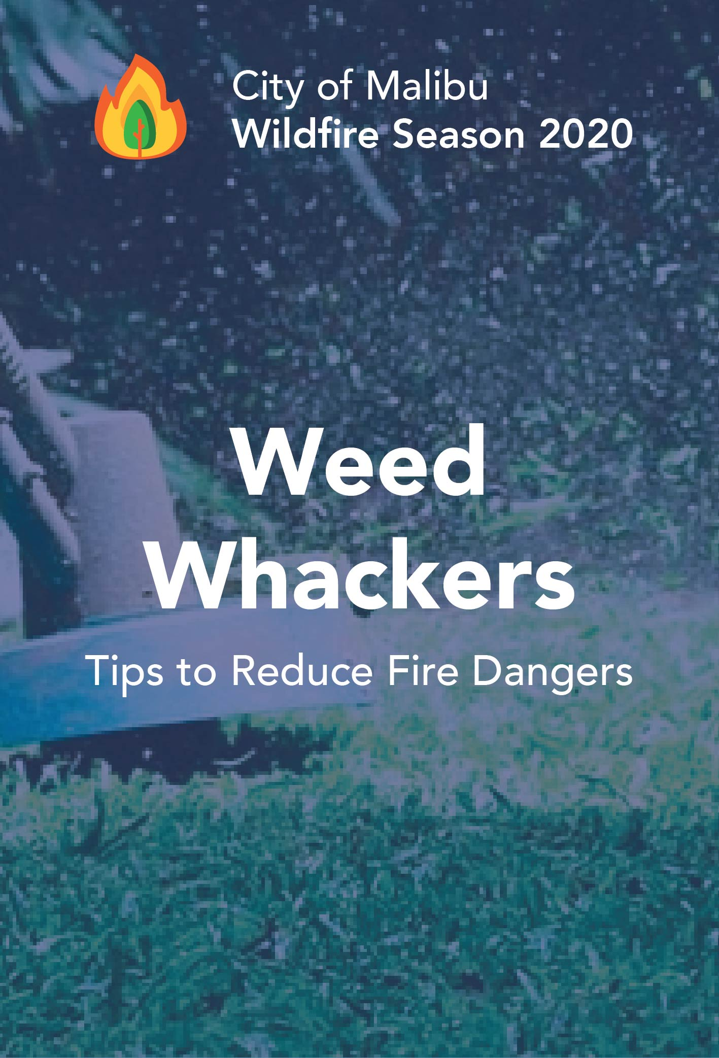 Weed whacker newsflash-05