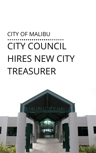 Treasurer hired