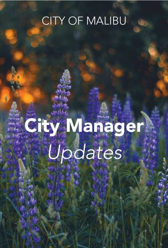 11.20 City Manager Update