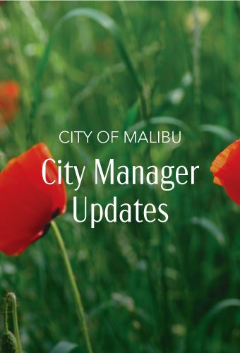 City Manager Updates Newsflash