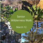 Senior Wilderness Walk Image