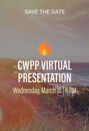 CWPP-meeting-Newsflash
